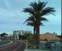 Day 5 – Las Vegas NV to Flagstaff AZ