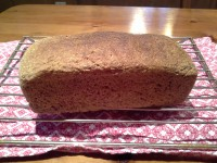 No-Knead Whole Wheat Bread