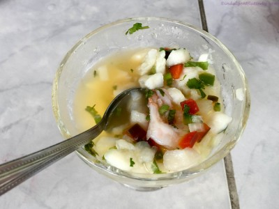Ceviche in Playa Tarcotes Costa Rica